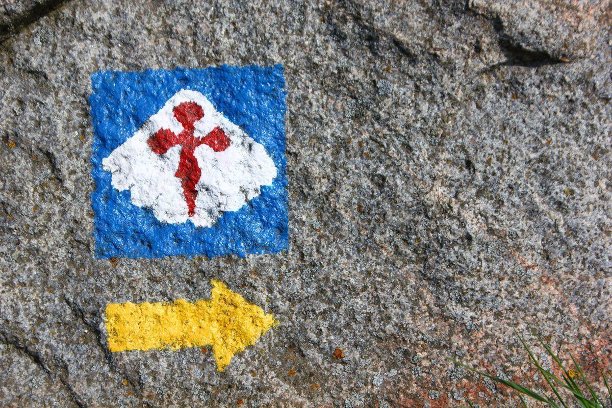 Znaki, muszle, strzałki… Jak wędrować polskim Camino?