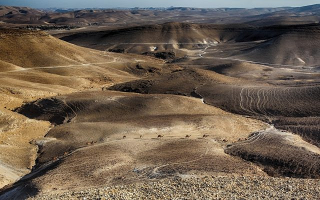 Pieszo przez Ziemię Świetą: Izraelski Szlak Narodowy i Szlak Abrahama